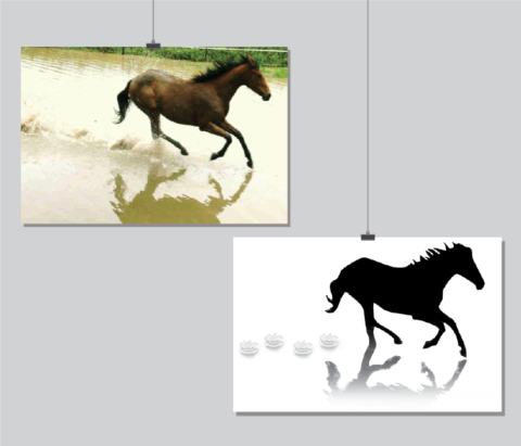 fotobewerking paard